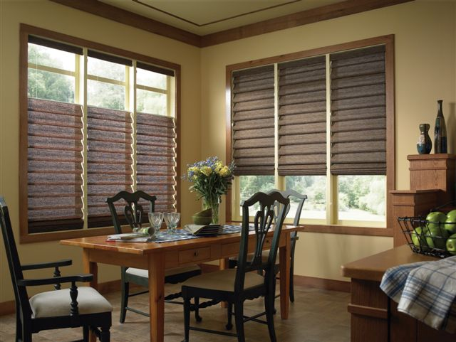 Roman shades manufacturer elite window fashions for Pictures of roman shades on windows