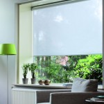 roller-shades-2