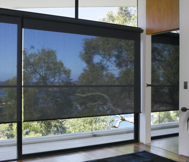 Motorized Solar Shade Amp Roller Blinds Supplier Elite Wf